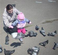Самое веселое занятие - кормление голубей