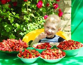 Нам лето подарило богатый урожай!!!