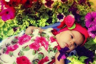 Найкраща рожева квіточка)))