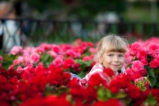 В море цветов