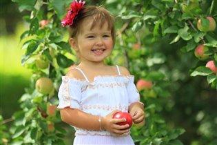 Одарило лето урожаем яблок.