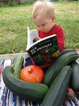 О дарах - об овощах