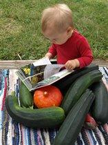 Об овощах
