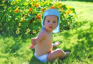 солнечное солнышко в солнечном саду