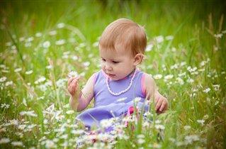 Вероника собирает цветы