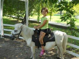 любимые пони