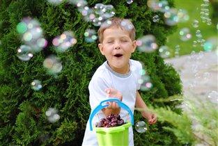 черешня с мыльными пузырями - фантастично!