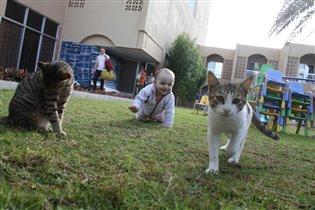 На прогулке кот и Вика