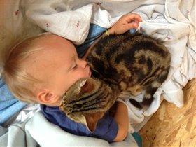 Добрынюшка и его кот-баюн