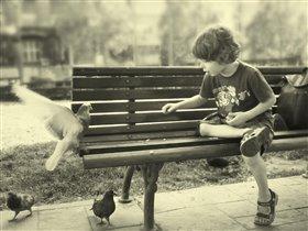 Мальчик и Голубь