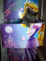 Маргоша в ящиках с игрушками