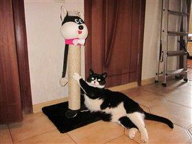 Лучше кошки зверя нет