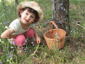 В лес с корзинкой
