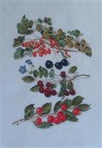 Thea Gouverneur_3063_Berry_Cherries