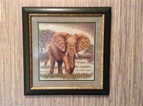 Слоны в интерьере. Великан