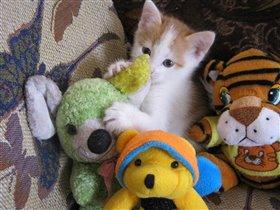 лиза с игрушками.