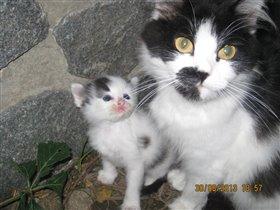 Маня и сынуля