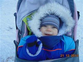 Прогулка в зимнем лису.