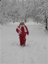 Новогодняя сказка  в зимнем лесу!