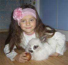 Мой кролик Стеффи
