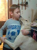 Танго с собаксом Баксом