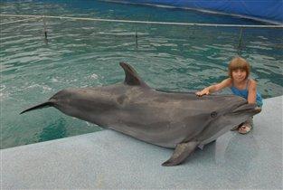 Дельфин и Вероника