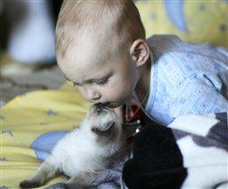 мой любимый,маленький котёнок!!!
