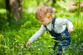 Первый урок ботаники