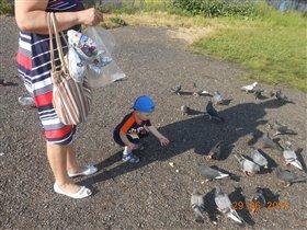 Никиточка кормит голубей,очень увлекательно!