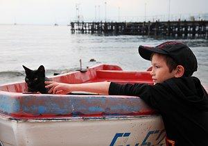Болгария. Морской кот )
