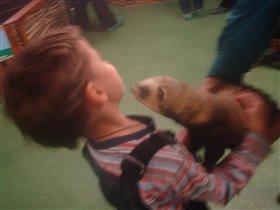 хорек лезет целоваться :)