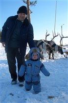 Знакомство с северными животными