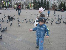 Загоняем голубей или они нас