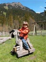 Альпийская лошадка