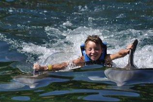 На дельфинах :)