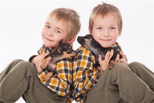 Даниил , Никита и наши щеночки породы Русский той