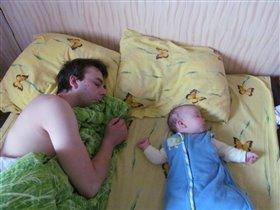 Вот так весь день мы крепко спим...