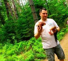 Вот таки грибы в наших Подмосковных лесах обитают