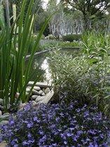 Выставка садов в Сокольниках
