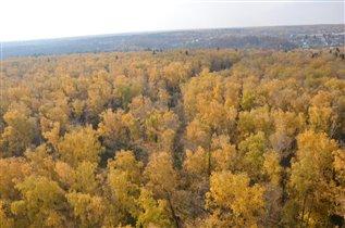 вид из моего окна осень
