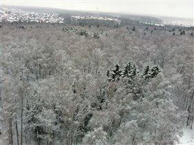 вид из моего окна зима
