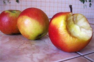 Соблазнительные яблочки