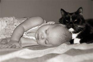 Подушка для кота. :)