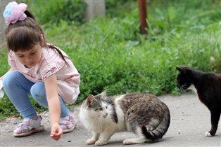 Катюша с друзьями