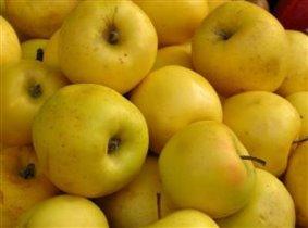 сочные аппетитные яблочки!