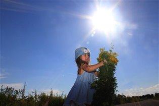 Летний солнечный денек