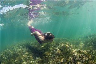 Подводная полянка