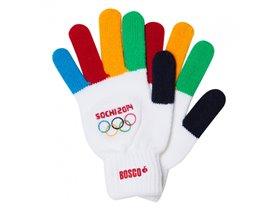 Перчатки Сочи2014