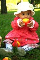 Дегустация осенних яблочек!