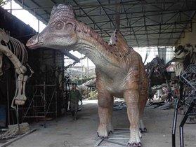 В Дарвиновский музей едет амурозавр!